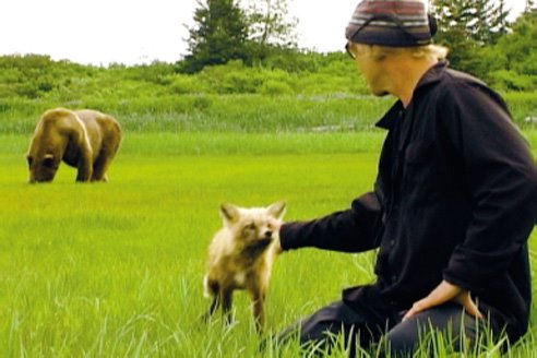Timothy Treadwell with his pet fox and his bear friend