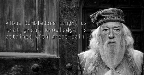 Albus Dumbledore - See the 30 Things That Harry Potter taught us
