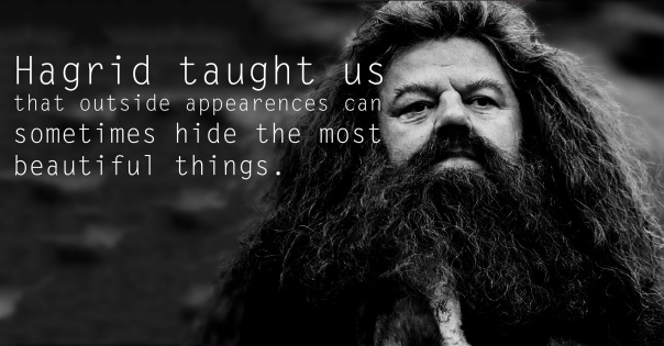 Hagrid - See the 30 Things That Harry Potter taught us